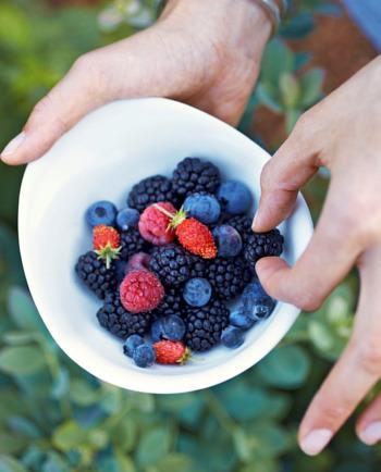 Le Resvératrol : un antioxydant aux propriétés rajeunissantes